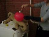 как лопнуть шарик? вариант №1